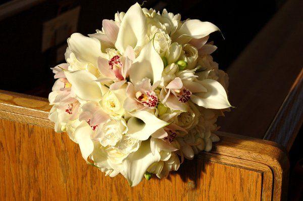 Tmx 1298926872663 MinicallasminicymbsPolofreesia Kirkland wedding florist