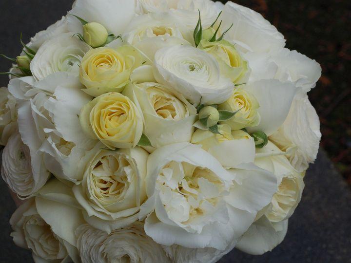 Tmx 1400562909480 Dsc001 Kirkland wedding florist