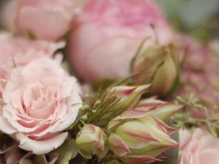 Tmx 1400563164371 Dsc011 Kirkland wedding florist