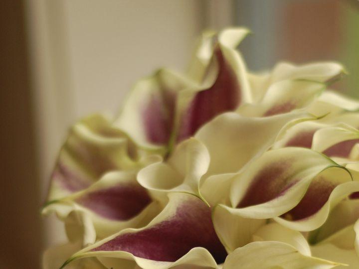 Tmx 1400563202434 Dsc022 Kirkland wedding florist