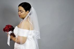 Picture Perfect Veils