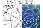 Branching Elements image