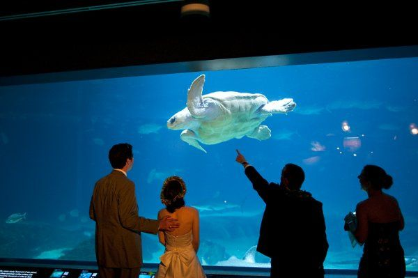 Adventure Aquarium Events Catering Venue Camden Nj