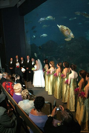 Wedding Party in Ocean Realm