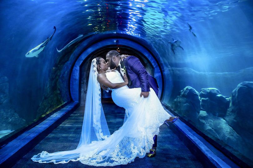 Kiss in the shark tunnel