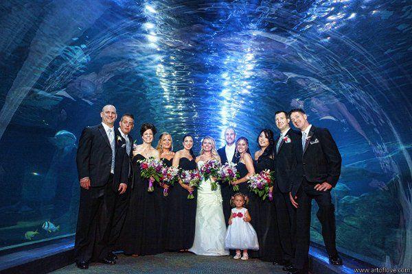 Tmx 1329254014194 MarieLabbanczPhotographySir0575 Camden, NJ wedding venue