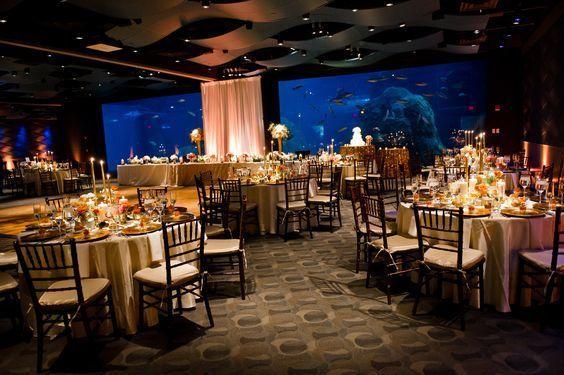 Tmx 1537035782 20983f334d8f0891 1537035782 2113df57f218f121 1537035781291 5 Currents Wedding P Camden, NJ wedding venue