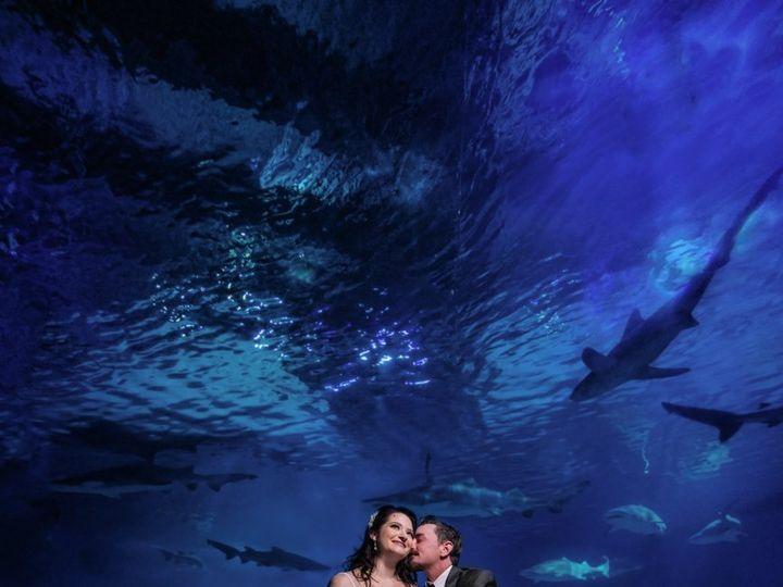 Tmx Bride And Groom Sitting In Shark Tunnel 51 2813 160511991349558 Camden, NJ wedding venue