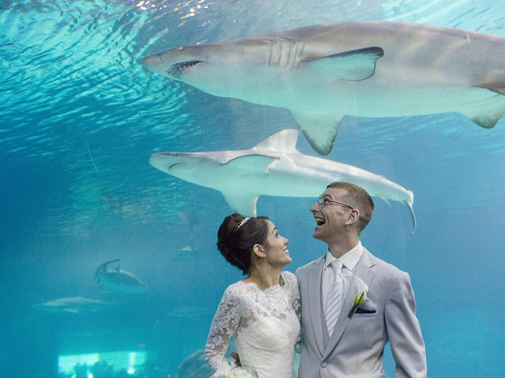 Tmx Bride Groom Sharks 51 2813 160511864459162 Camden, NJ wedding venue