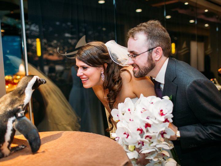 Tmx Bride Groom With Penguin 51 2813 Camden, NJ wedding venue