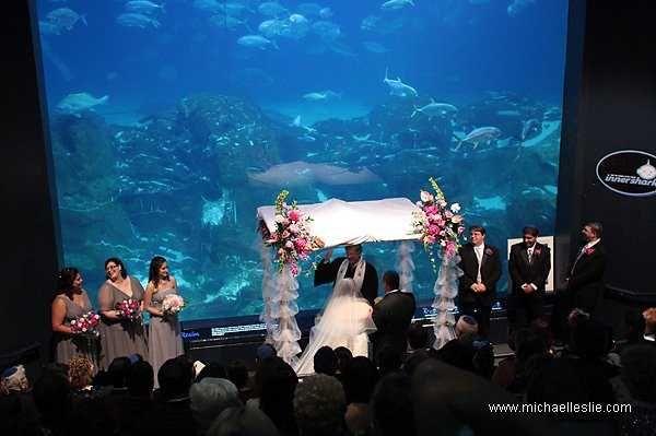 Tmx Ocean Realm Theater With Chuppa 51 2813 160917766712090 Camden, NJ wedding venue