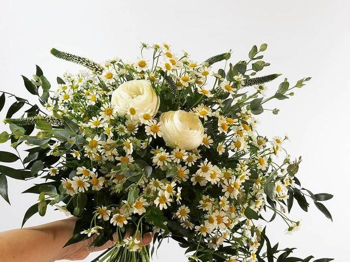 Tmx Daisy 51 1034813 159657557515655 Delafield, WI wedding florist
