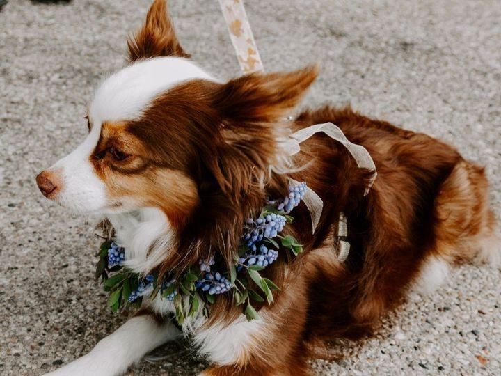 Tmx Mo 51 1034813 162666200750251 Delafield, WI wedding florist