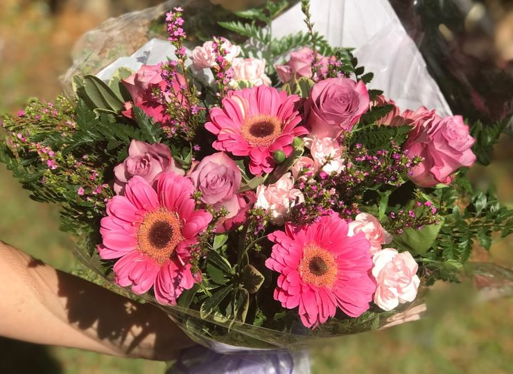 Gerber daisies for a birthday