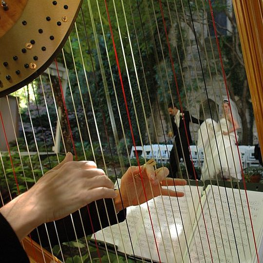 Bride and groom through the harp in the chase court ceremony garden