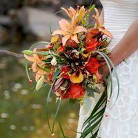 Modern Fall Bride