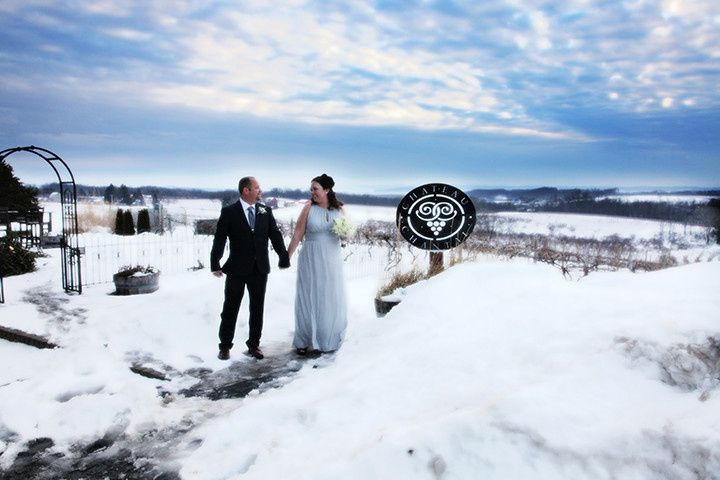 toledo wedding photographer 5