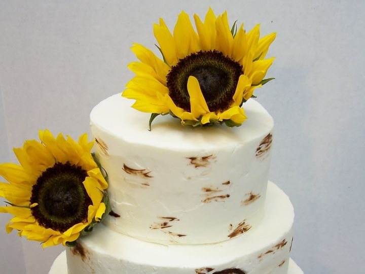 Tmx Birch Bark And Sunflower2 51 933913 Wellfleet wedding cake