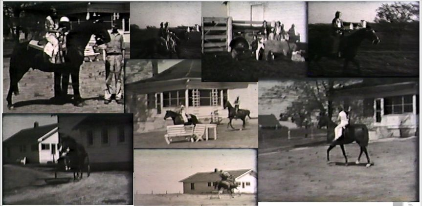 Crestview Dairy Early 1900's