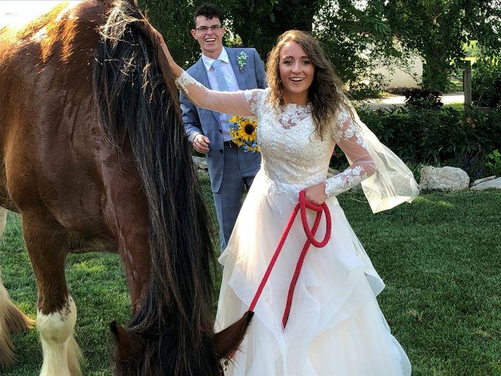 Tmx Horse 51 1024913 159580008483075 Kansas City, MO wedding venue