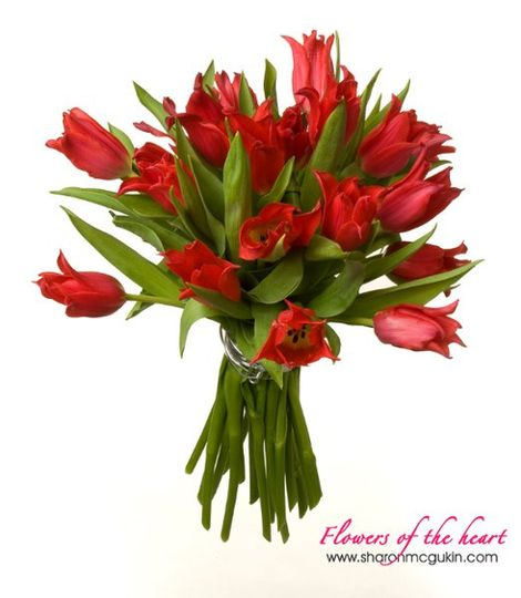 This hand-tied bouquet of fresh tulips is a great choice for a casual wedding.
