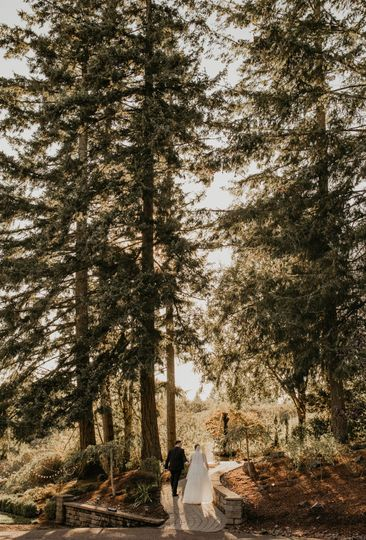 Couple in the Forrest Terrace