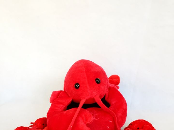 Tmx Lobster Gang 51 1052023 1572282820 Newport, RI wedding favor
