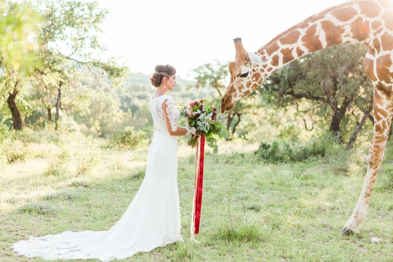 Red strings with giraffe