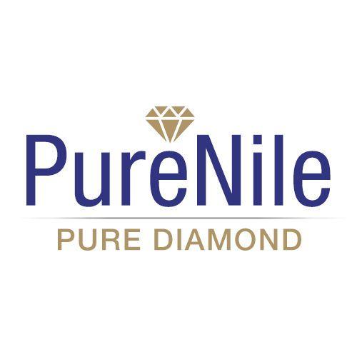 2faa0408b305607e purenile logo Final logo 500x500