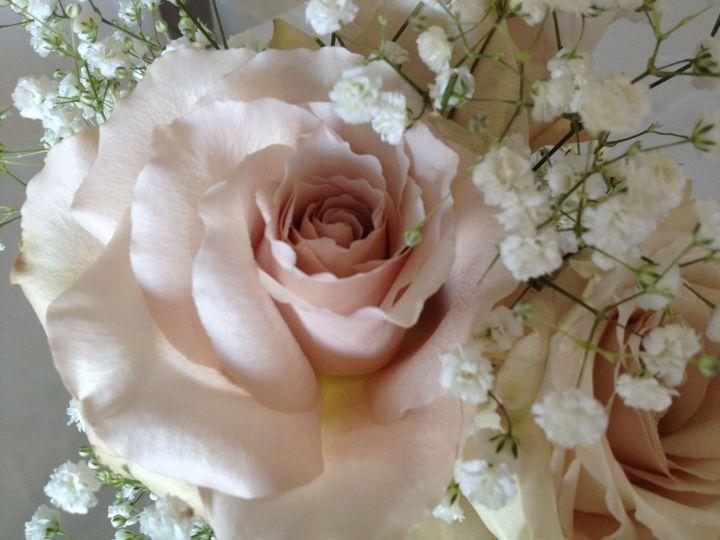 Tmx 1515810658 85cce30b4968d1cf 1515810656 Ef6e79c1e67e6887 1515810654436 14 IMG 1070  1  Signal Mountain, TN wedding florist