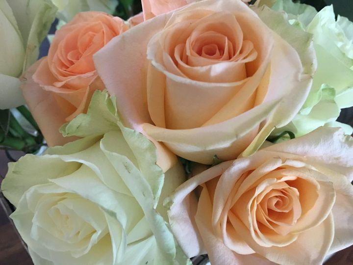 Tmx Img 0600 51 716123 157416682245358 Signal Mountain, TN wedding florist
