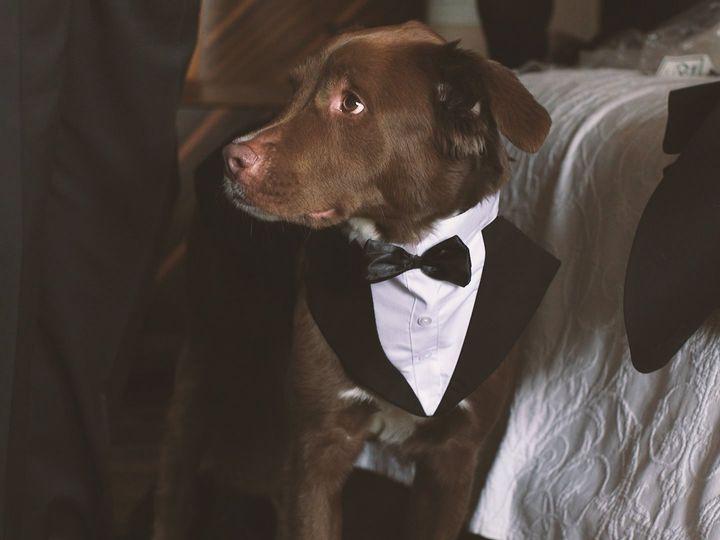 Tmx Brooke And Ryan 00 01 55 11 Still018 51 1916123 160375468931721 Concord, NH wedding videography