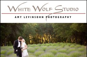 White Wolf Studio