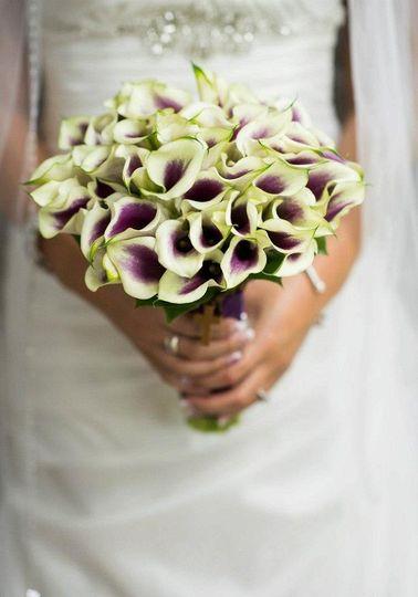 picasso calla lily purpl white nj florist