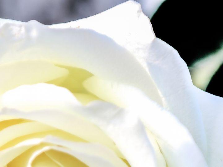 Tmx Stephanie 2 51 1900323 158820793845941 Suffolk, VA wedding photography