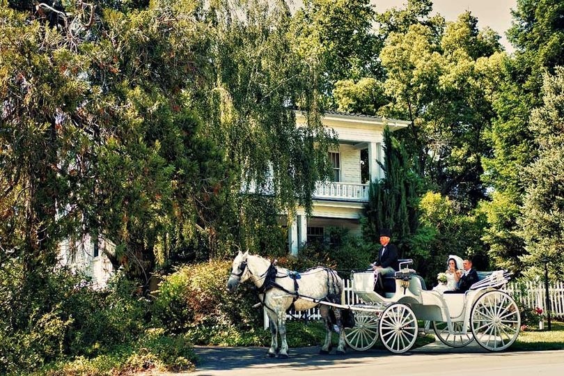 Bride and Groom in Horse Drawn Carriage - Nevada City Carriage Company