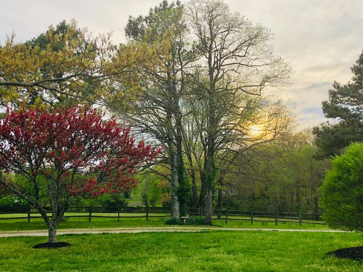 Spring at WindSong Farm