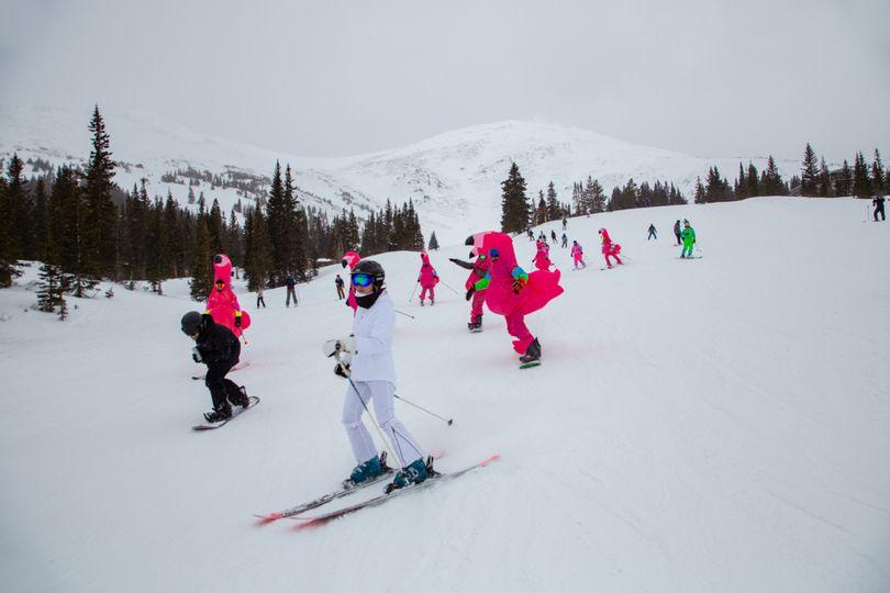 Flamingo ski wedding