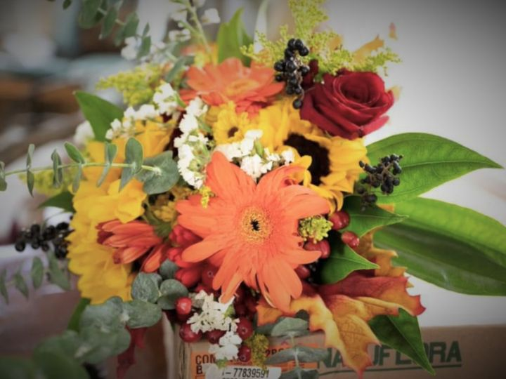 Tmx Sunfflower Gerbra 51 1065323 160371769736024 Port Richey, FL wedding florist
