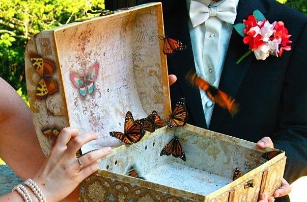 Tmx 1477673171448 Butterfly21 Seattle, WA wedding officiant