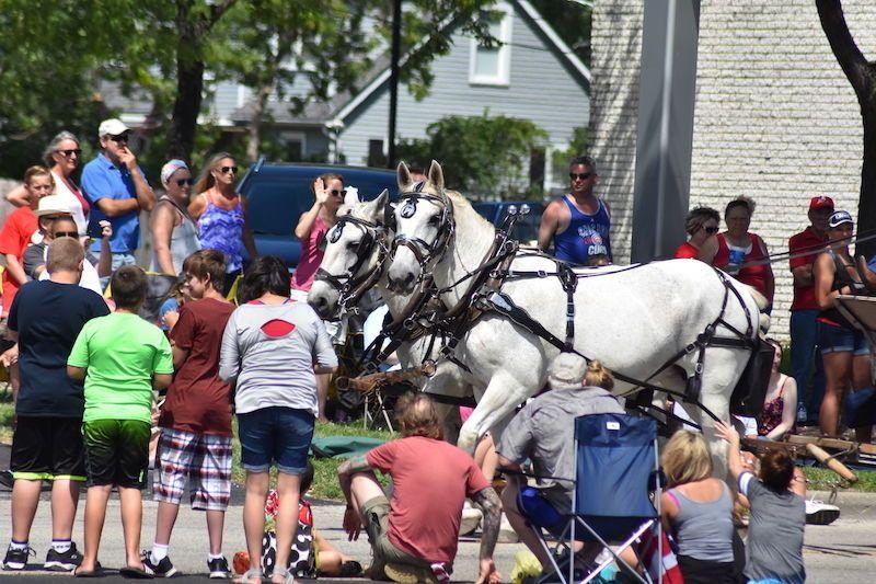 Molly and Sally at the Fox Lake 4th of July Parade