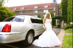 Driver Limousine Service image
