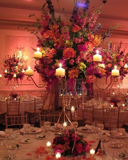 Amaryllis event decor flowers northvale nj weddingwire 800x800 1462480659444 2amapics 001 22 junglespirit Images