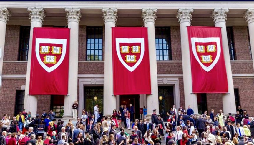 Harvard large banners