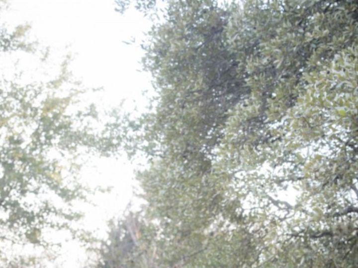 Tmx 1453607867231 A 56 Cedar Park, Texas wedding photography