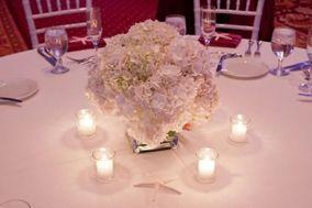 Amoretto Weddings