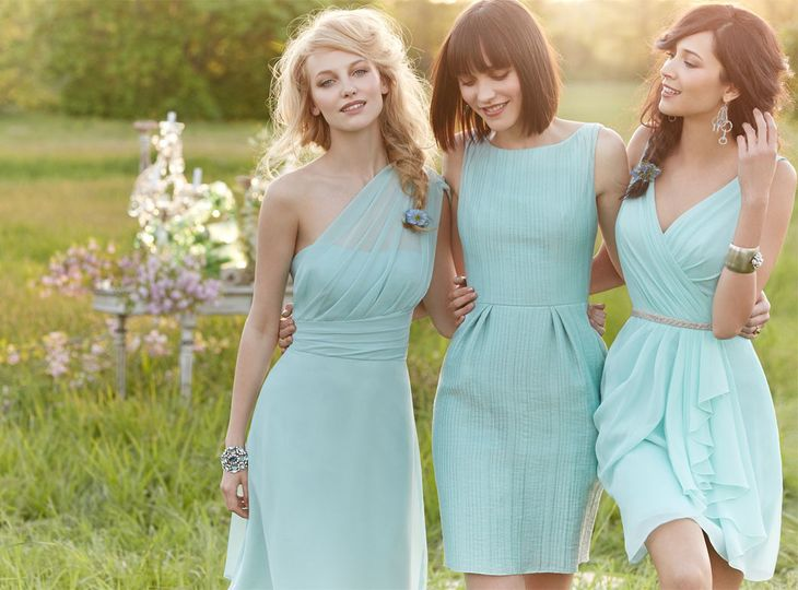 jim hjelm bridesmaids image