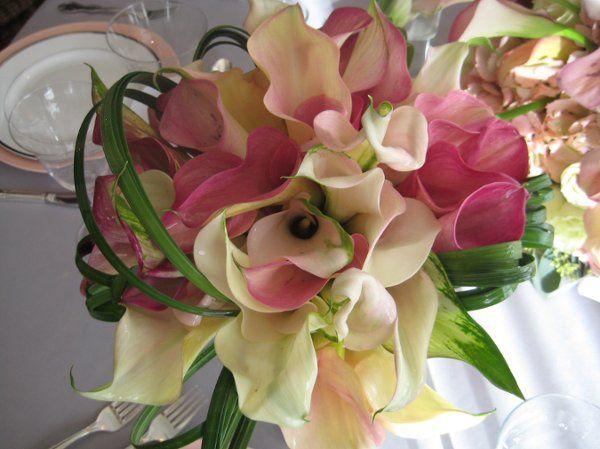 Tmx 1305212918062 IMG4190 Syosset wedding planner