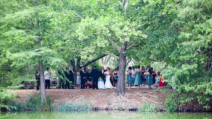 East Texas Piney Woods