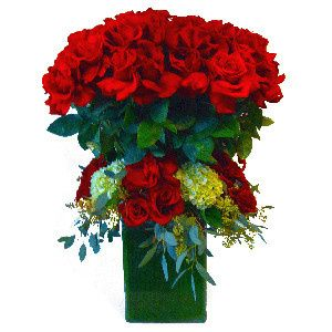 red roses standing tall